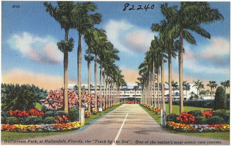 Gulfstream Park Racing, Hallandale Beach, Florida, United States