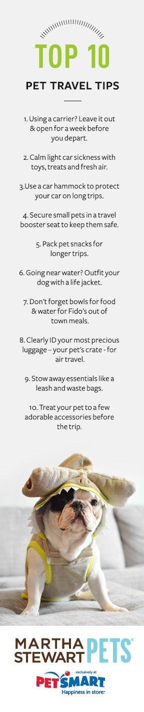 The top ten pet travel tips from Martha Stewart Pets #marthastewartpets #petsmart (scheduled via http://www.tailwindapp.com?utm_source=pinterest&utm_medium=twpin&utm_content=post596967&utm_campaign=scheduler_attribution)