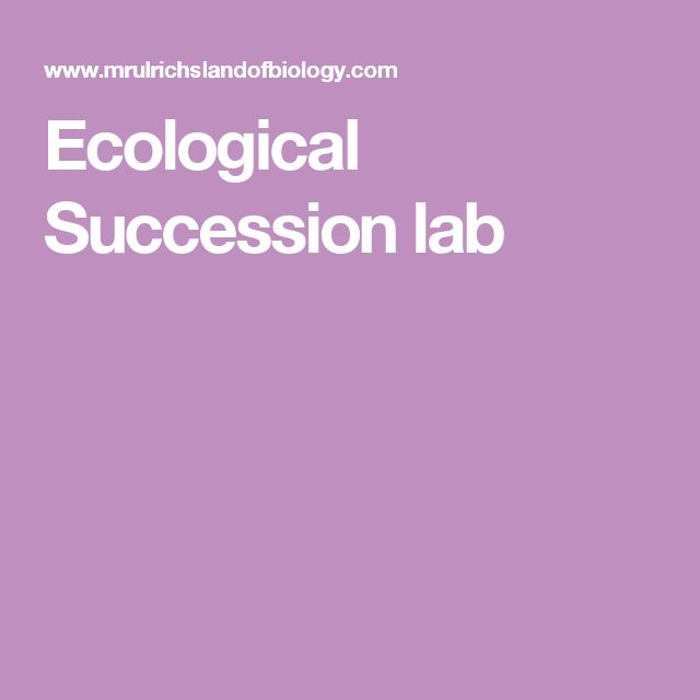Ecological Succession lab