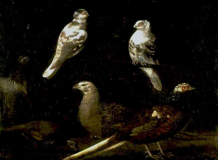 29 Sebastien Stoskopff birds