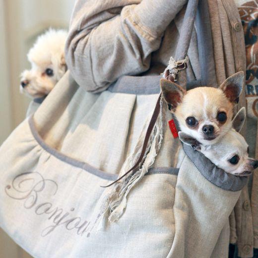「ブルーブルーブルー blue bleu bleue」東京駒沢公園から徒歩3分、駒沢通りに面した雑貨・犬服のお店 blue bleu bleueとune baguette s'il vous plait!オリジナルの洋服、首輪、グッズはもちろん、 b.b.bセレクトによる犬との生活が楽しめるような商品や、手作りごはんに欠かせないお肉(冷凍)、サプリメント、書籍等も取り扱っている提案型のショップです。 チワワ、トイプードル、ヨーキーなど小型犬からミニチュアダックス、フレンチブルなどの中型犬へのおしゃれなフレンチテイストの犬服を提案しています。