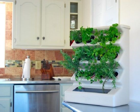 Perfect Herb Wall · Kitchen Herb GardensKitchen ...
