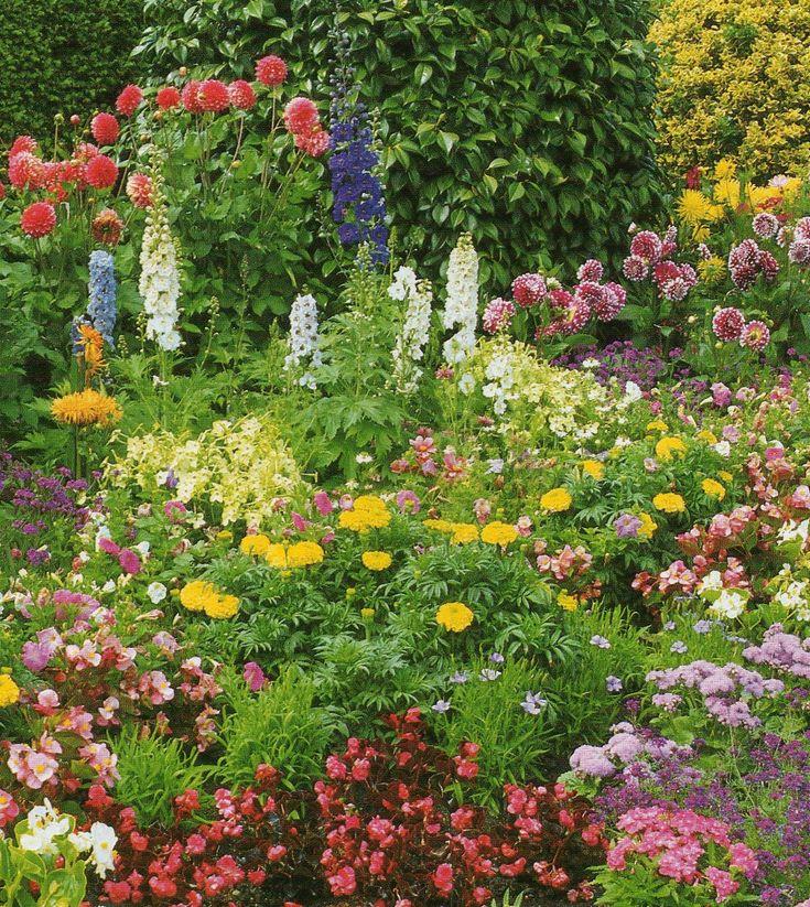 amazing garden design heaven in the world butterfly garden design