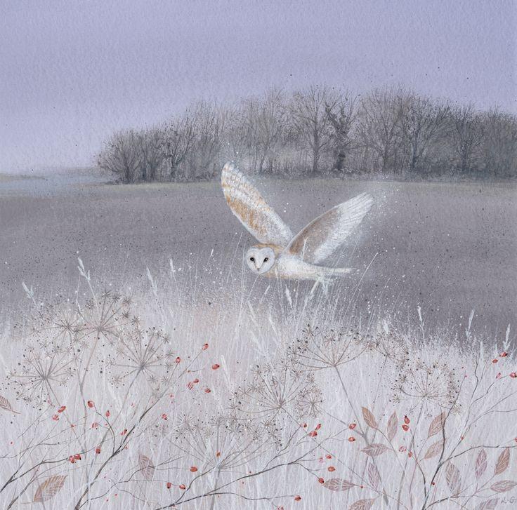 Owl art by Lucy Grossmith