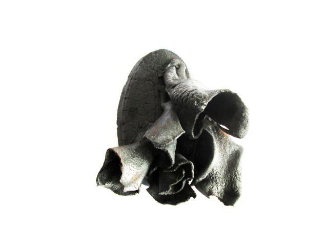 Serie: Portrets / Anatomía de los pensamientos / Jorge Manilla - Broche. Madera, piel, plata, acero.