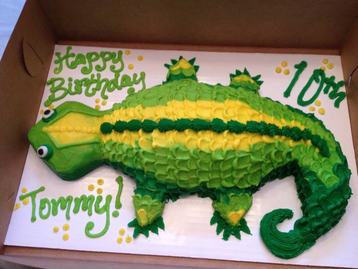Lizard cake for the animal loving son.