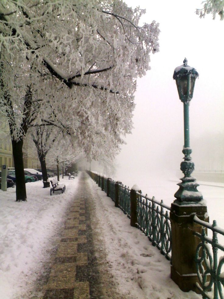 Winter embankment in Hradec Králové, Czechia
