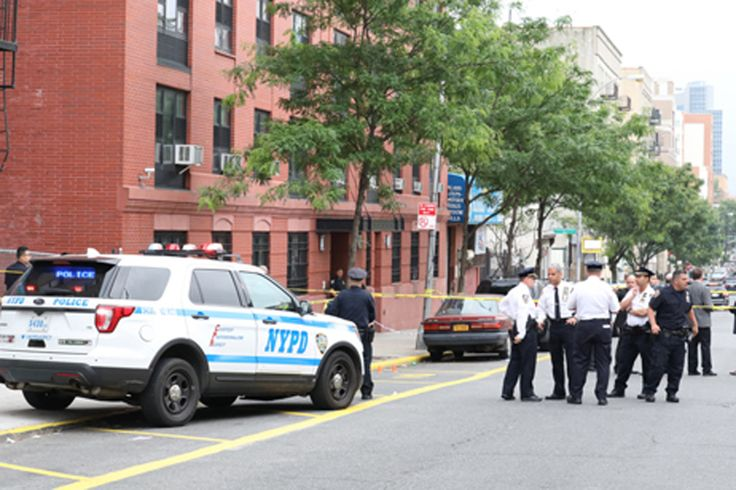 A 5-year-old Bronx boy was shot in the head by a stray bullet on his birthday Monday evening, cops said. The incident unfolded in Morrisania outside of 1138 Washington Ave. at around 5:15 p.m., acc…