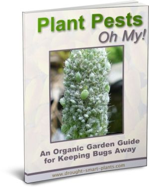 23 best gardening succulent xeriscaping e books images on buy the plant pests e book identify the insects that are destroying your garden fandeluxe Choice Image