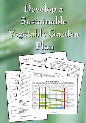 Develop a Sustainable Vegetable Garden Plan