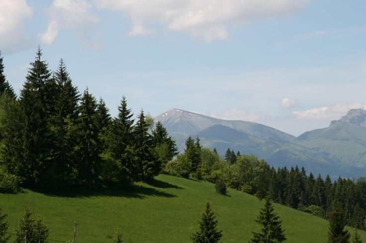 Dolny Kubin - Slovakia