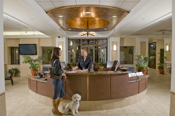 Front Desk of The Barkley Pet Hotel. Looks like it's for humans, eh?