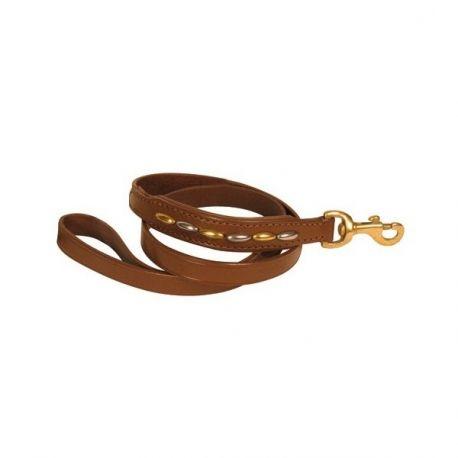 CORREA TACHUELAS, Correa para perro fabricado en cuero color marrón. Adornado con detalles metálicos en color plata y dorado. http://bit.ly/1M0rgmt