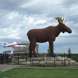 Giant Moose, Moose Jaw, Sask.Mac the Moose takes his job as Moose Jaw's most famous tourism ambassador seriously. Standing watch since 1984, Mac is 10 metres tall and weighs in at a whopping 9,000 kilograms. Visitors searching for the city's tourism HQ just have to keep their eyes peeled for big Mac. He's the large friendly fella hanging out nearby. Moose Jaw is renowned for its generous hospitality and intriguing galleries, museums and attractions. (Courtesy of Tourism Moose Jaw)