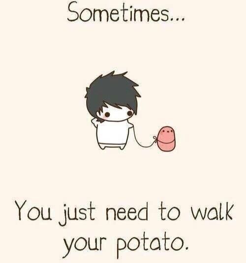 Why is L walking a potato ( L is from death note btw)