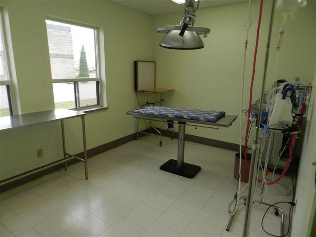 Essa Veterinary Services - Operating Room