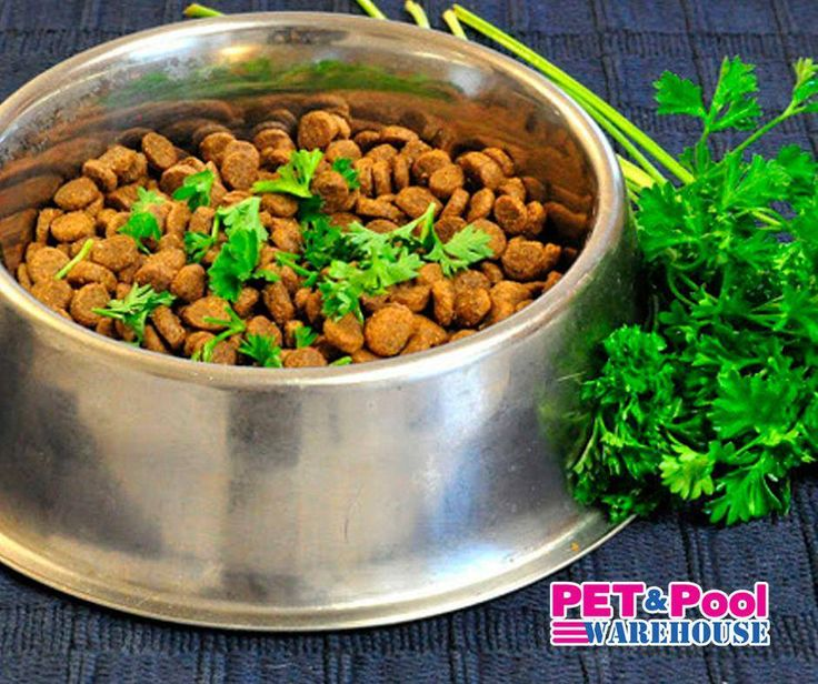 #Lifehack: Parsley is a common herb, which is extremely safe for use on dogs. Sprinkle a little bit of fresh parsley into your dog's food to freshen their breath and help boost their immune system. #PetPoolWarehouse