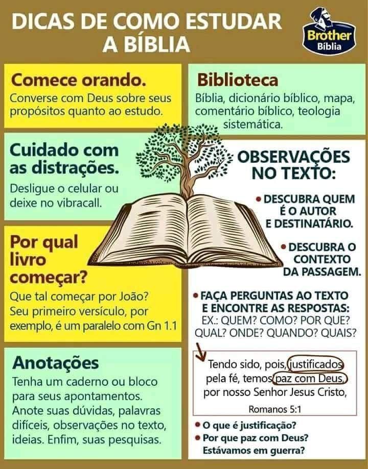 Dicas De Como Estudar A Bíblia Bíblia Biblia Frases E