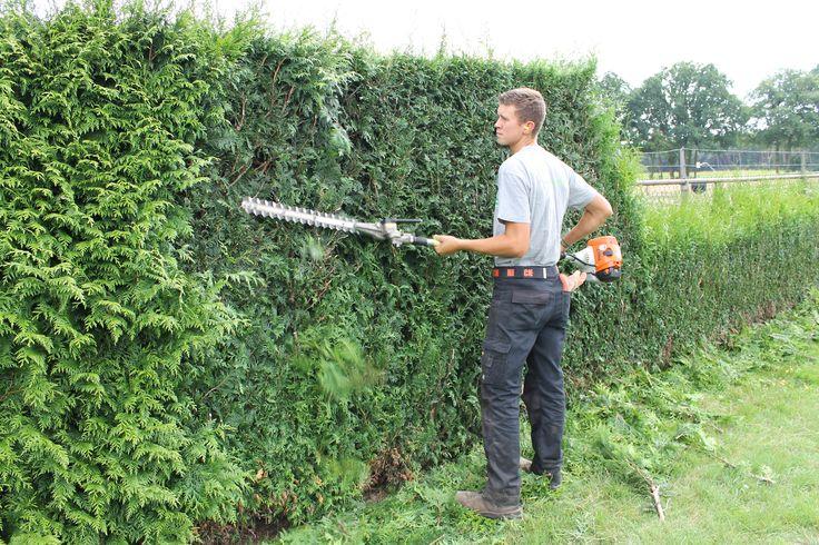 Onderdeel van snoeibeurten is oa ook het snoei- en scheerwerk aan uw hagen en coniferen zodat uw tuin de strakke lijnen blijft behouden die ook tijdens het ontwerp van de tuin bedoeld waren. Door investering in de juiste machines en materialen kunnen wij deze werkzaamheden vakkundig uitvoeren. Of u nu een buxusbol in de tuin heeft of een haag van 5 meter hoog, De Middelpas kan deze klus voor u klaren.