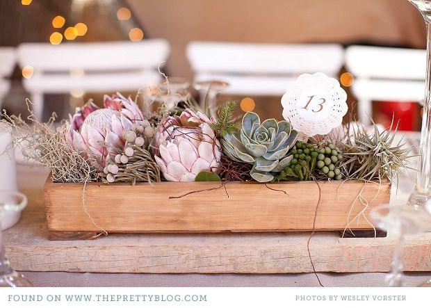 Succulents, island grown King protea, and tillansia for a earthy table design