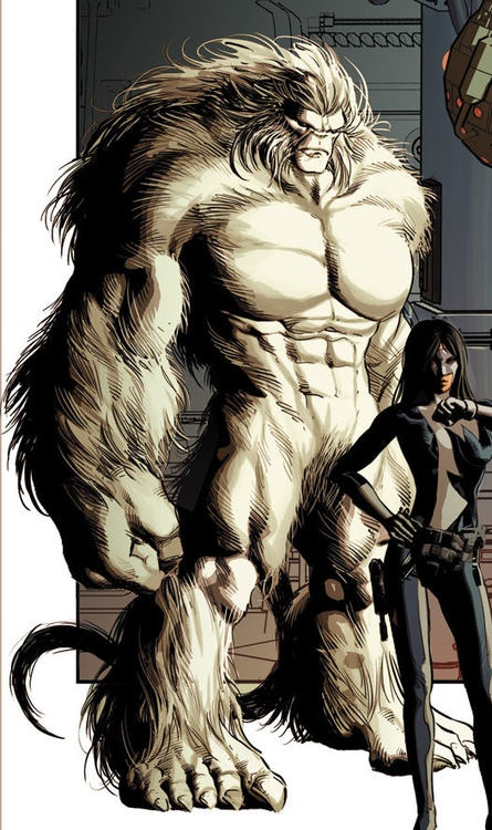 Marvel Comics: Alpha Flight/Sasquatch