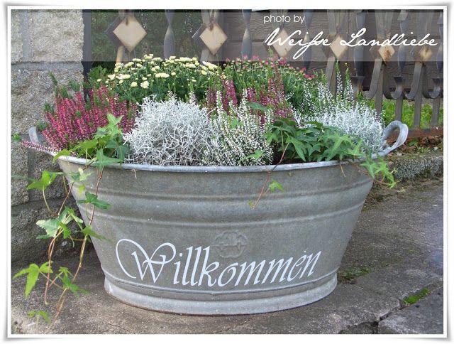 Weiße Landliebe: Herbstbepflanzung & einen schöne alte Truhe