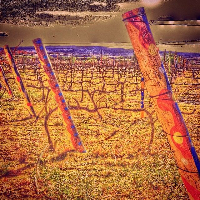 La vinya pintada #LaGranada #Penedes