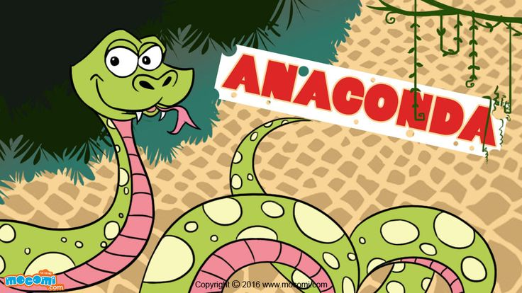 Anaconda are the largest and heaviest snakes on earth. Read here Anaconda Facts. For more GK articles for kids, visit: http://mocomi.com/learn/general-knowledge/