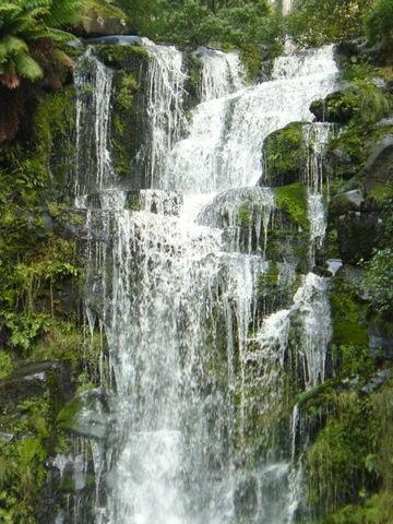 Erskine Falls, Lorne, VIC - Nothing Like Australia
