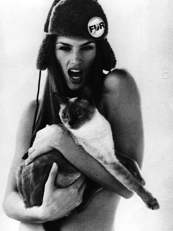 American top model Cindy Crawford waers only a fake fur aviator cap and holds a Siamese cat as she poses for a campaign against the use of real animal pelts on this early October 1994 photo. Copies of the cap, known as a chapka, will be sold to raise funds for PETA (People for the Ethical Treatment of Animals). (AP-Photo/Steven Klein/-10/1994-)