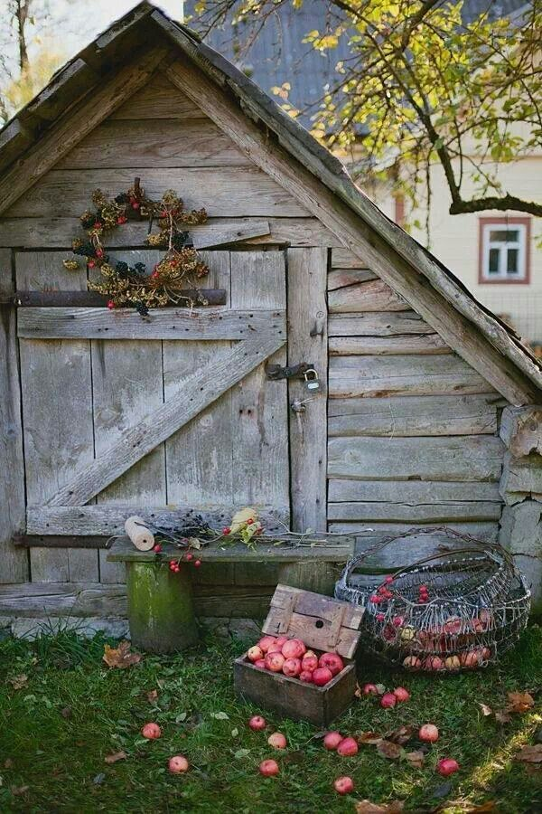 a rustic country shed - a little small but maybe could be a wood doghouse or ???