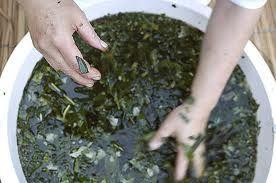 Santeria herbal bath mix - hierbas buena, romero, ruda, albaca, flor de naranja y altamisa