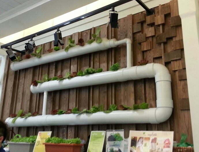 10 images about hydroponics on pinterest gardens for Vertical garden wall systems