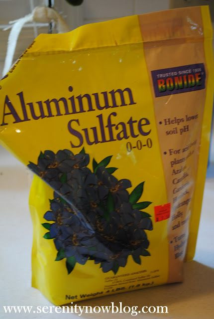 Serenity Now: How to Get a Hydrangea Plant to Bloom. Aluminum Sulfate lowers the pH of your soil to get hydrangeas to bloom.