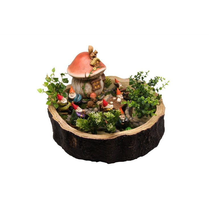 Alpine Gnome Miniature Garden Kit