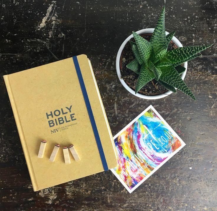 Tan Single Column New International Version Journalling Bible www.holyhope.co.uk