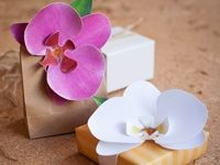 the elli blog Paper Orchid