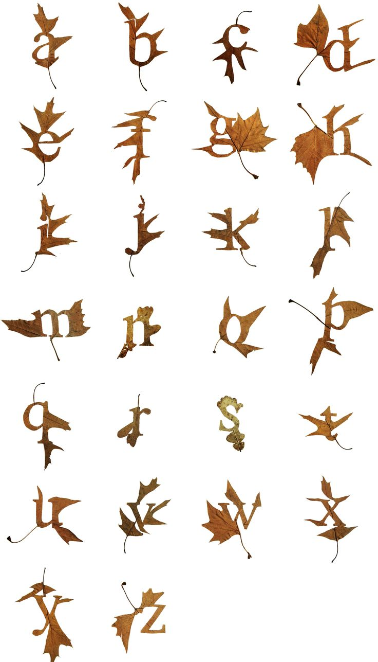 Fine Oddity - Leaf Alphabet Posters Coming Soon