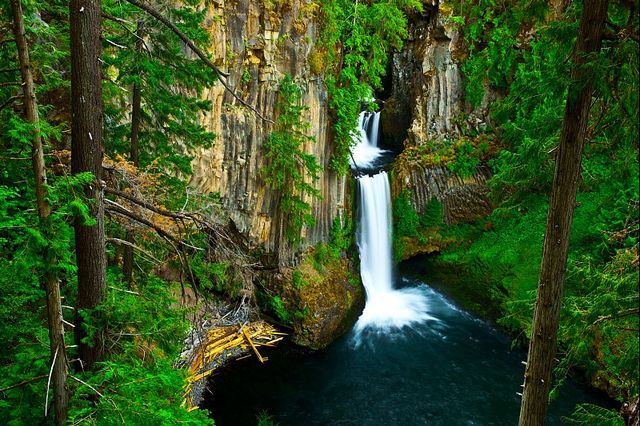 Basalt Stone Umpqua National Forest : Oregon national forest fire restrictions