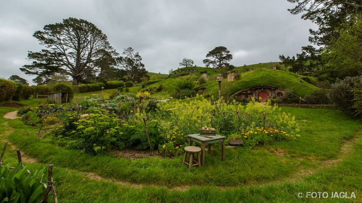 Neuseeland (Nordinsel) - Matamata (Hobbiton)