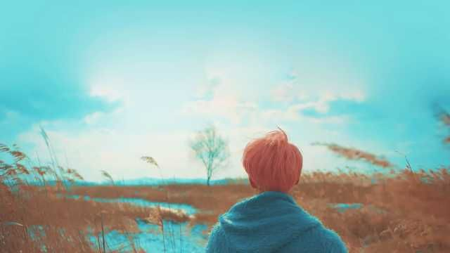 Spring Day Wp Version Bts Spring Day Wallpaper Bts Spring Day Bts Aesthetic Pictures