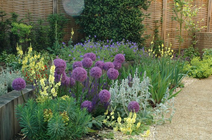 planting in gravel mulch in contemporary Gloucestershire garden