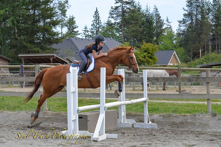 Me and my horse at warm up day at our schooling show