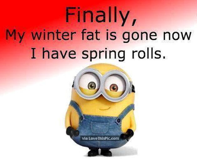 Finally My Winter Fat Is Gone Now I Have Spring Rolls spring funny quotes minion spring quotes happy spring happy spring quotes hello spring goodbye winter first day of spring minion quotes hello spring quotes first day of spring quotes Finally My Winter Fat Is Gone Now I Have Spring Rolls spring funny quotes minion spring quotes happy spring happy spring quotes hello spring goodbye winter first day of spring minion quotes hello spring quotes first day of spring quotes