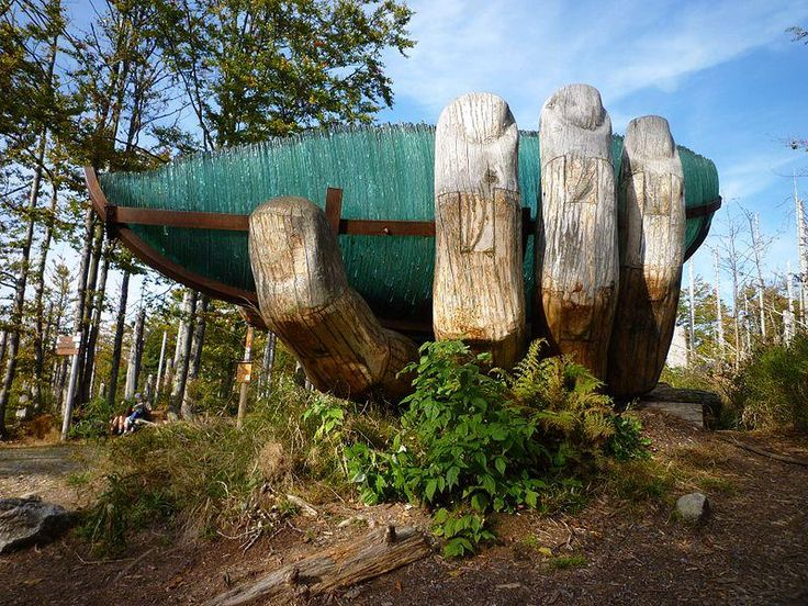 National Park Bayerischer Wald, Germany