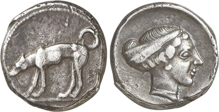 GRIECHEN SIZILIEN SEGESTA Didrachme (8,40g). ca. 44035 - 420/5 v. Chr. Vs.: Flussgott Krimisos als Hund n. l. Rs.: Kopf der Nymphe Segesta mit Sphendone n. r. Hurter, Segesta 113 (stgl.).