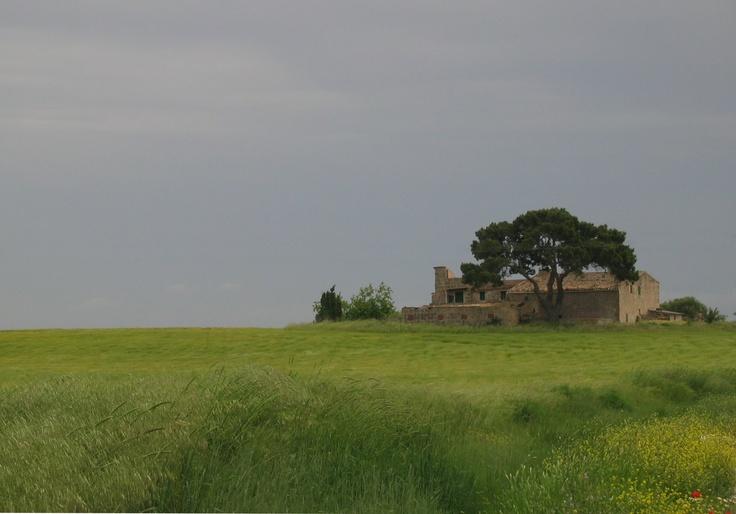 Marjorca landscape