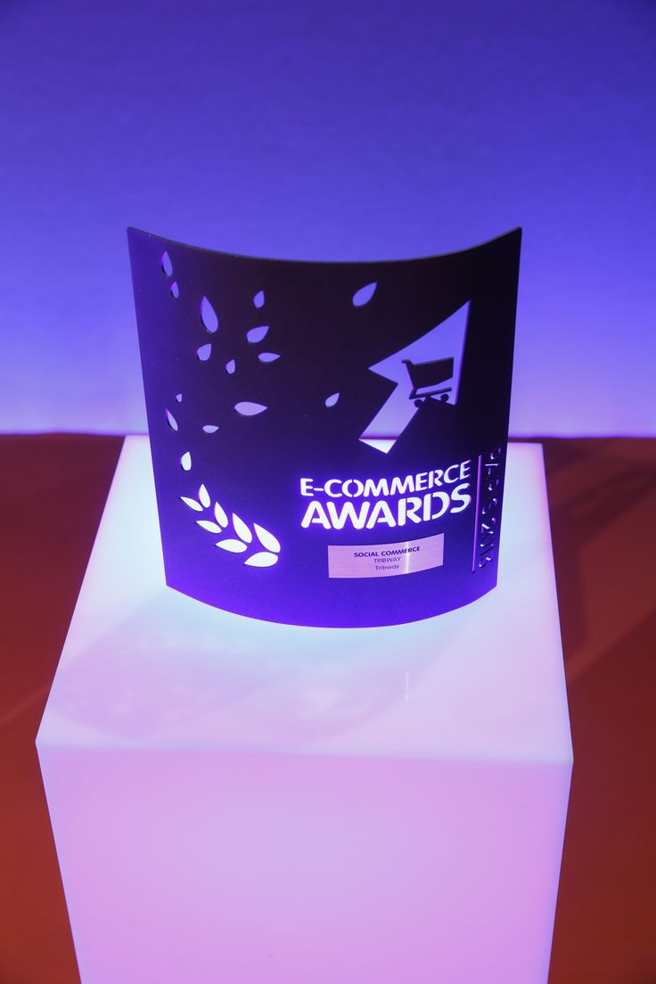 """E-commerce Award dans la catégorie """"Social Commerce"""" remporté par @Tribway #ECP13 #Awards"""