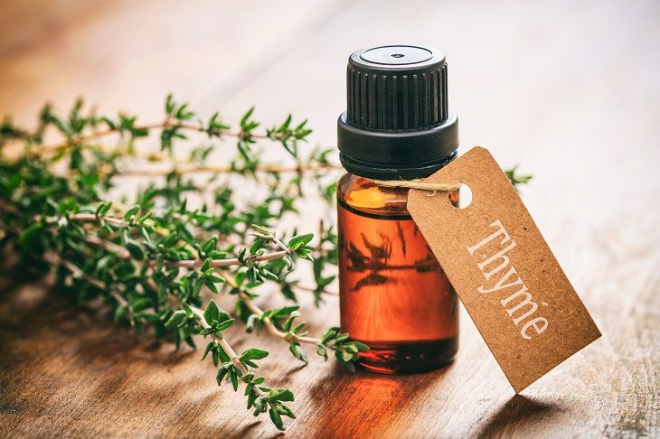 Thyme Oil for Hair Growth