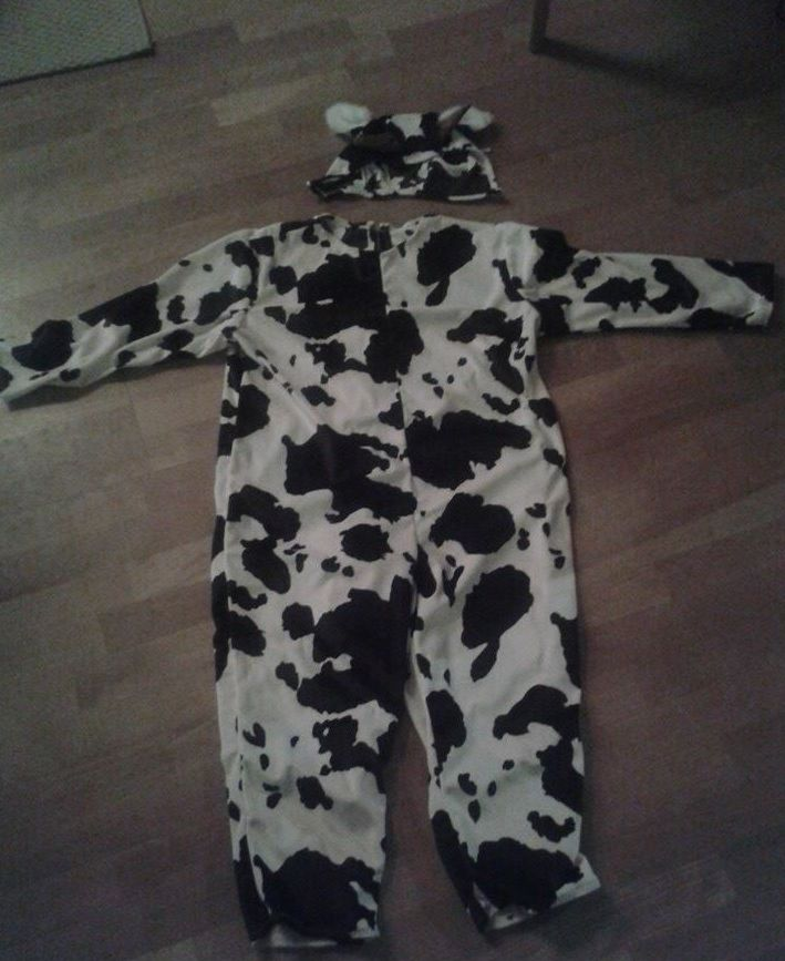 Cow costume for a child. I helped my mother in law make it. She cut the fabric, I sew the costume.